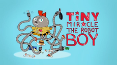 Tiny miracle the robot boy