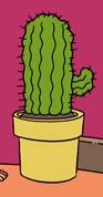 Jim's Cactus