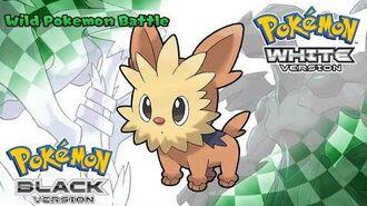 Pokemon Black White - Battle! Wild Pokemon Music (HQ)