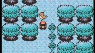 Pokemon Silver Gold Crystal - Ilex Forest