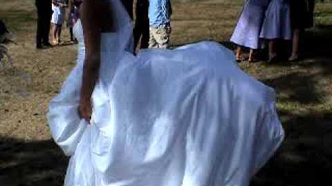 My wife under my sisters wedding dress