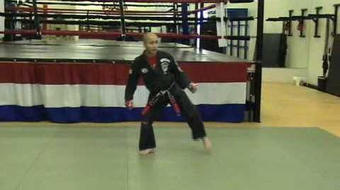 CASA DE KENPO - KICKING SET 1 - 2nd Edition