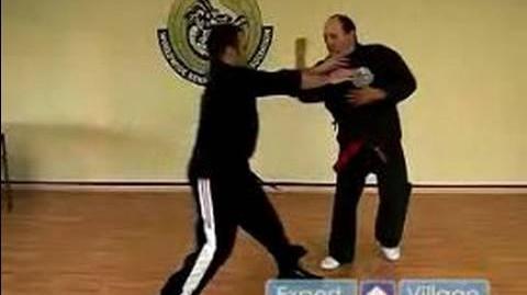 American Kempo Karate Techniques The Aggressive Twins Kenpo Karate Technique