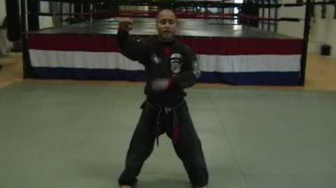 CASA DE KENPO - AMERICAN KENPO - BLOCKING SET 1 & 2