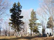 Underhill Burying Ground