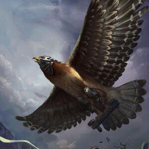 Sidekick hawke