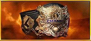 Item the one belt