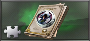 Item shadow contract