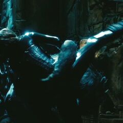 Selene fights a Lycan in Thomas's Coven.
