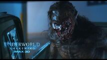 Underworld Awakening BTS-Fido