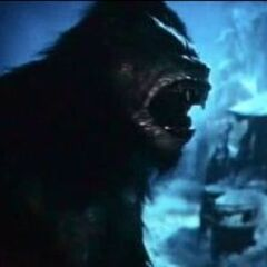 A Werewolf transforming in <i>Underworld: Evolution</i>.