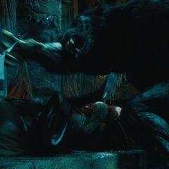 A Lycan attack inside Thomas's Coven