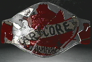 No Holds Barred championship