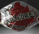 XWF No Holds Barred Championship