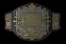 AWA World Championship