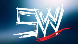 SWWE Logo