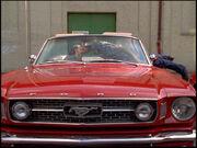Günnis-Mustang-F01-01