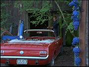 Günnis-Mustang-F01-03