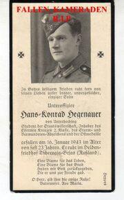 H.K.Hegenauer
