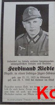 F.Riedle