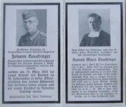 J.Bauchinger
