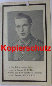 F.H.Welz02