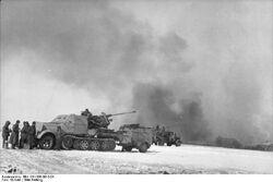 Bundesarchiv Bild 101I-090-3913-04, Russland, Halbkettenfahrzeug mit Flak