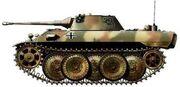 Leopard1pj3jt1