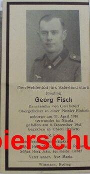 G.Fisch