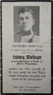 Ludwig Wiesinger