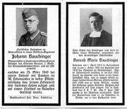 J.Bauchinger01