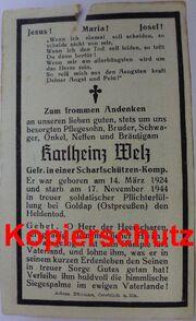 F.H.Welz01