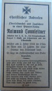 Raimund Sonnleitner01