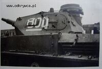 PzIV800