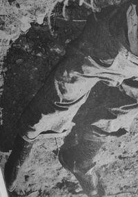 LA John Doe 1921-51