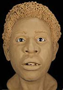 Hillsborough County Jane Doe (1979)