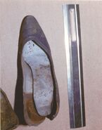 Bucks County Jane Doe shoes2