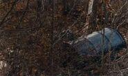 Bear Brook crime scene