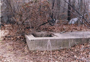 Bucks County Jane Doe scene
