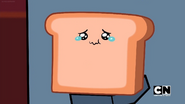 Who Took Toast (116)