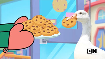CD Goose with Cookie