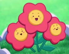New flowers-0