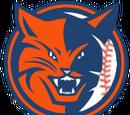 Los Angeles Bobcats