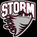 Storm 71062A B8B7B7 000000 71062A 7