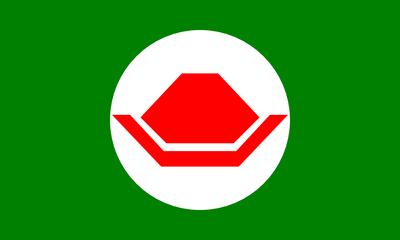 Flag of the Koopa Kingdom