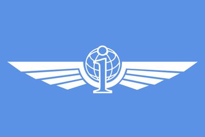 Internet flag by fenn o manic-d4ol9cn