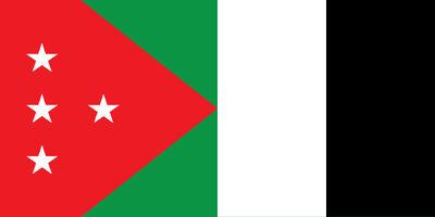 Arab-Kingdom-of-Damascus---National-Flag