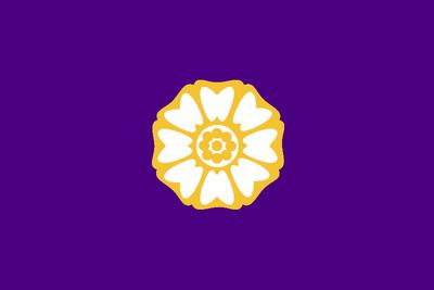 Republic city flag by lavanyasix-d3jyqmm