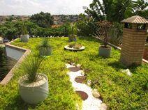 Telhado-verde-2-500x373