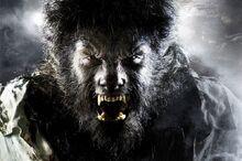 2009 the wolf man 001